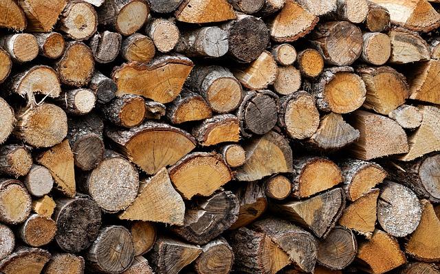 Le meilleur bois de chauffage pour votre poêle à bois ou votre cheminée